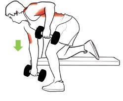 Pathologies de l'épaule en musculation fig2