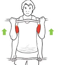 Pathologies de l'épaule en musculation fig3