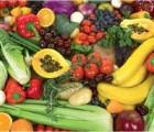 105-nutrition-image à la une
